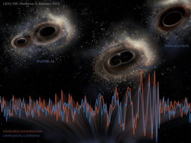 A visualisation of the signal detected by LIGO. [Image credit: LIGO, NSF, A. Simonnet]